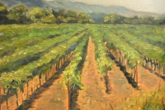 California_Vineyards1